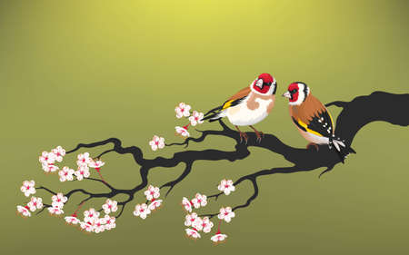 Vector illustration of branch of blooming cherry with goldfinch