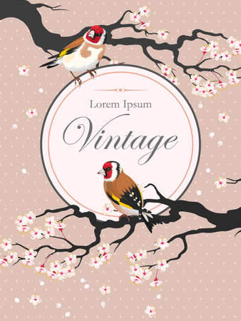 finch: Vector vintage card with blooming cherry and goldfinch