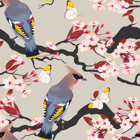 ornithology: Waxwing on the cherry vector seamless background Illustration