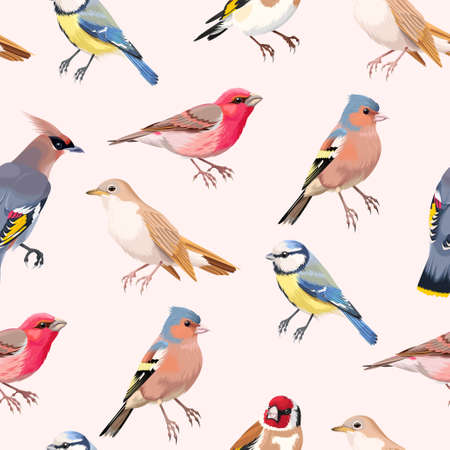 tomtit: Vintage colorful beautiful songbirds vector seamless background