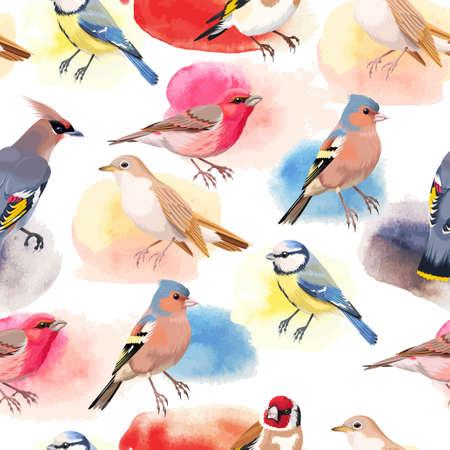 chickadee: Vintage colorful beautiful songbirds seamless background