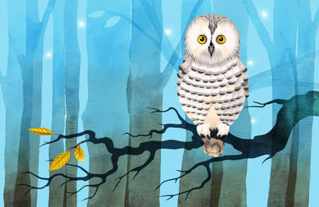 aquarelle painting art: illustration of the polar owl on the branch in the forest Illustration