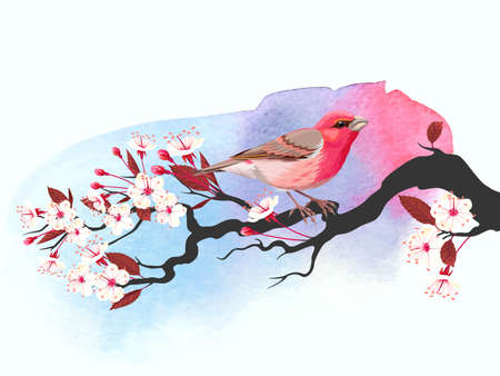 Vector illustration of cute pink bird on blooming cherry branch