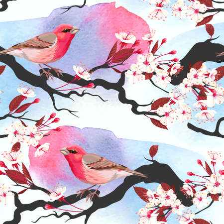 finch: Pink bird on blooming cherry branch vector seamless background