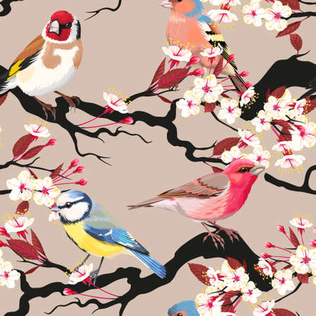 tomtit: Birds and blooming cherry vector seamless background Illustration
