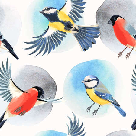 tomtit: Flying bullfinch and tomtit vector seamless background Illustration