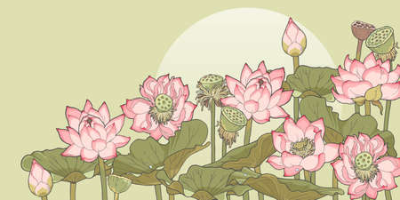 thickets: Vector illustration of thickets of blooming and withered lotus Illustration