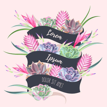 bromeliad: Vector card with ribbon and exotic flowers and succulents Illustration