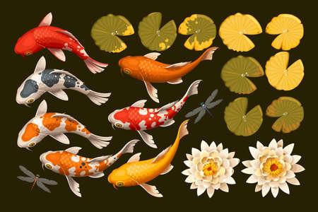 Wektor zestaw koi ryby i kwiaty lotosu i liści