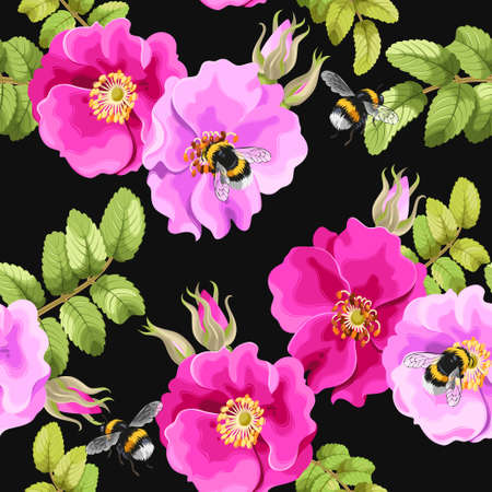 dogrose: Brier rose flowers and berries vector seamless background