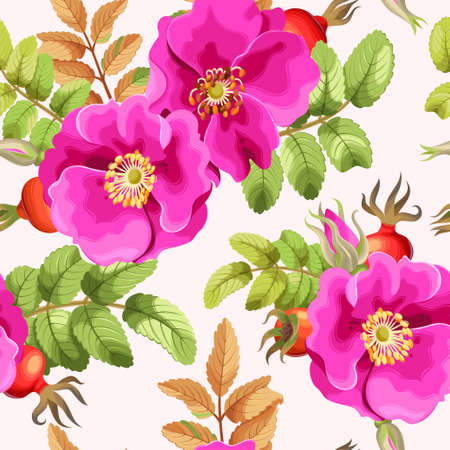 Brier rose flowers and berries vector seamless background