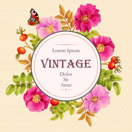 briar: Vector vintage card with sweet briar flowers and berries