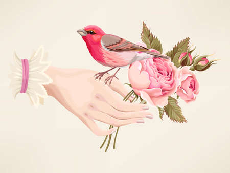 Vector vintage illustration of woman hand with roses and pink bird