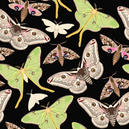 Flying moths seamless Ilustrace