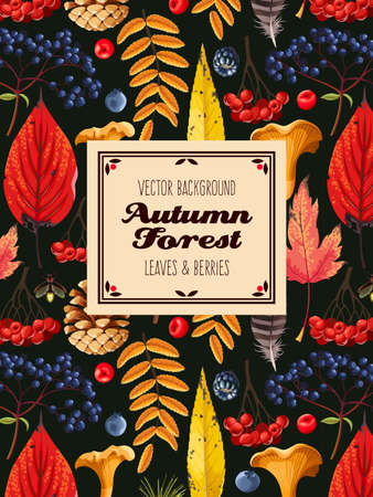 Autumn card with leaves and berries. Çizim