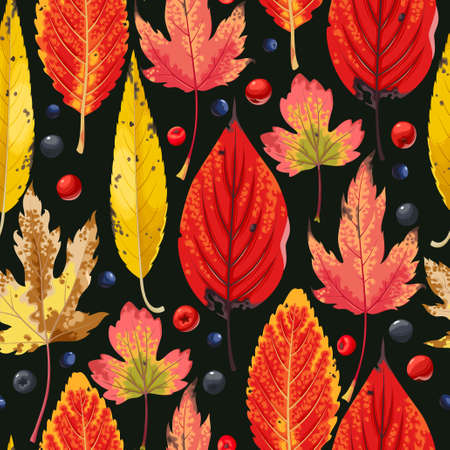 Autumn leaves and berries pattern design.