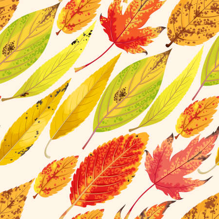 eberesche: Vector seamless pattern with varicolored autumn leaves