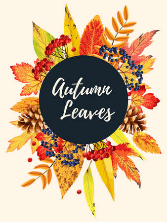 Autumn card with leaves Çizim