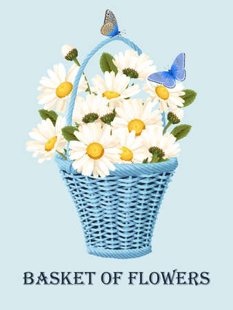 Vector illustration of vintage basket with camomiles