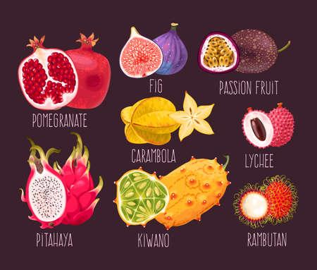 Set of exotic fruits icon.