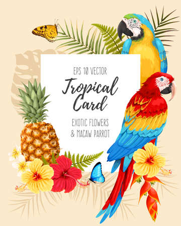 Vector card with macaw bird and flowers illustration. Stock Illustratie