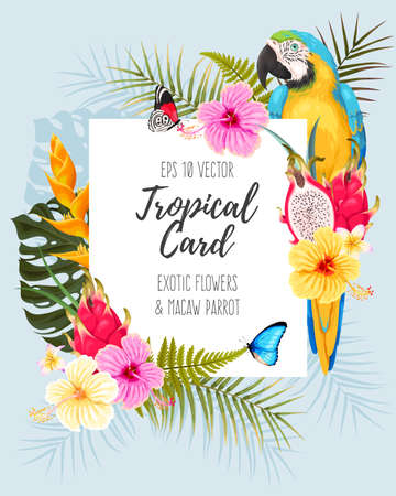 Vector card with macaw parrot, pitahaya and tropical flowers