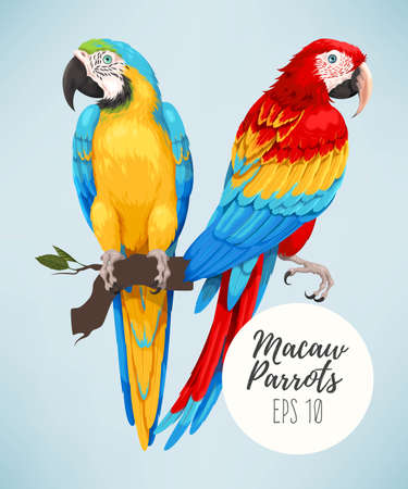 Tropical parrots collection in colorful Illustration. Stock Illustratie
