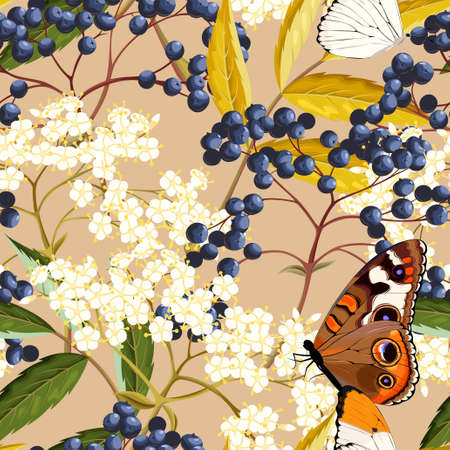 Elderberry and butterflies vector seamless pattern on color background
