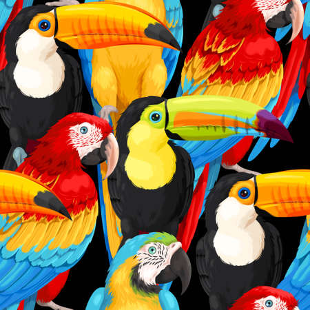 Seamless pattern macaws and toucans