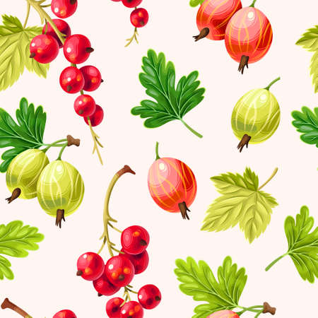 Nahtloses Muster mit Stachelbeeren und Beeren der roten Johannisbeere auf biege Hintergrund Vektorgrafik