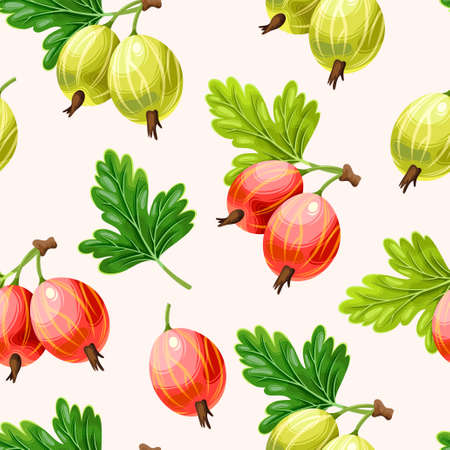 Vector seamless pattern with realistic green and pink gooseberry on a white background