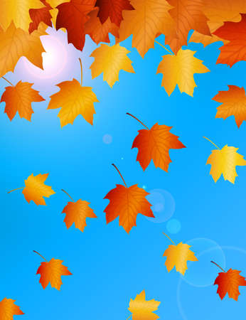 brown autumn leafs over sky with sun.illustration  illustration