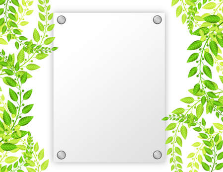 white blank paper with green leafs over white background photo