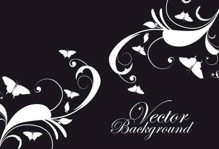 cliche: adornos en blanco y negro con fondo de mariposas. illustation