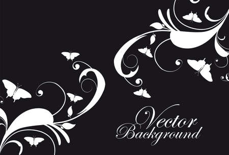 illustation: black and white ornaments with butterfly background. illustation Illustration