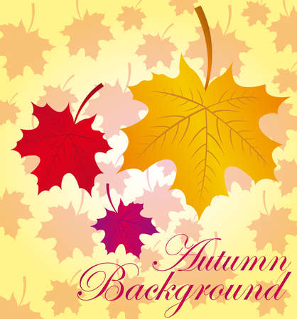 gold,red and violet autumn leaves over leaves background.  Vector