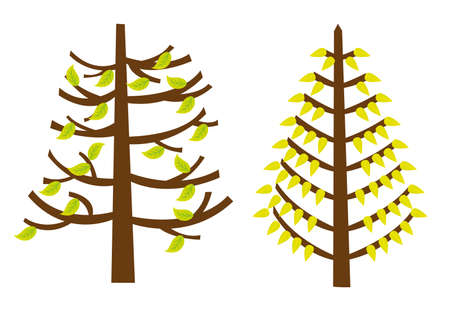 trees cartoons with green fall leaves isolated. vector Stock Vector - 10768576