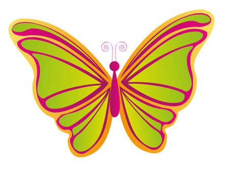 papillon rose: papillon magnifique isolé sur fond blanc. vecteur Illustration