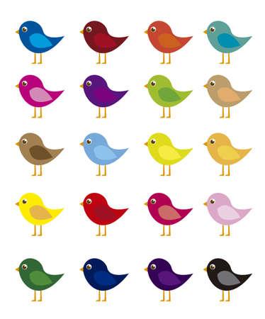 aves caricatura: de dibujos animados pájaros de colores aislados sobre fondo blanco. vector