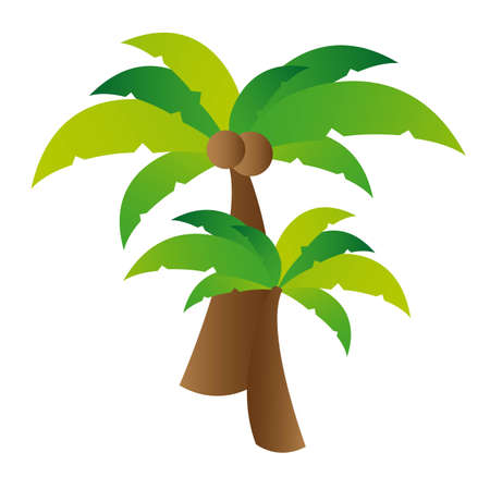 Coconut palm tree illustration over white background. vector Stock Vector - 11317699