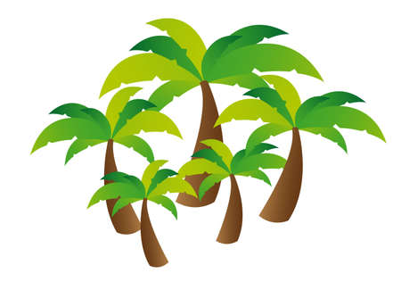 Palmboom vectot geïsoleerd met witte achtergrond Vector Illustratie