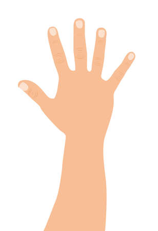 caucasian open hand over white background. vector illustration Illustration