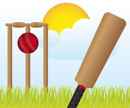 cricket ball: cricket set over landscape with grass and sky vector