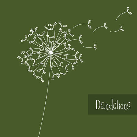 flying float: white dandelions over green background. vector illustration