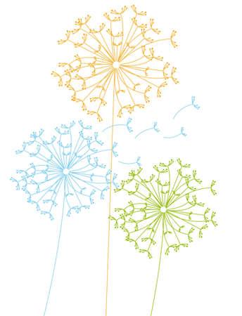 fluff: dientes de le�n lindo aislado sobre fondo blanco. ilustraci�n vectorial