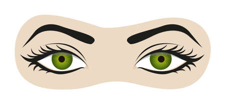 eyes open: green eyes with eyelashes and eyebrows illustration Illustration