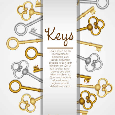 old keys on white background with space for text Vector