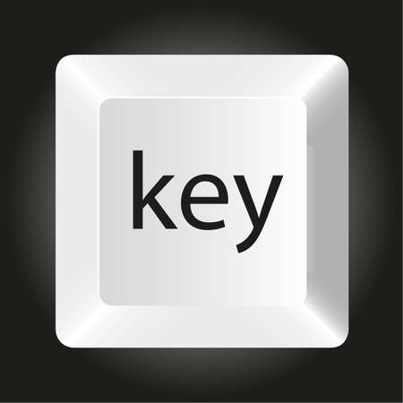 input device: computer white key, isolated on black background, vector illustration Illustration
