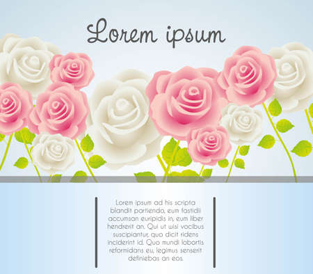 Invitation card with colorful roses, vector illustration Stock Vector - 14239832