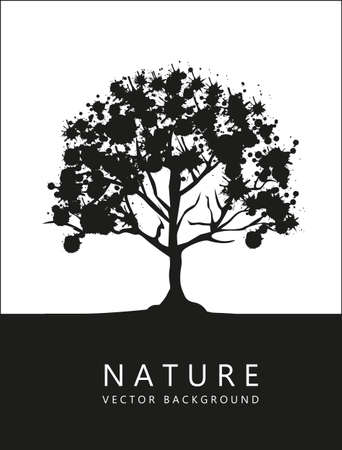 black silhouette of a tree, on a white background, vector illustration Vector